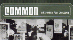 Common – Like Water For Chocolate Instrumentals