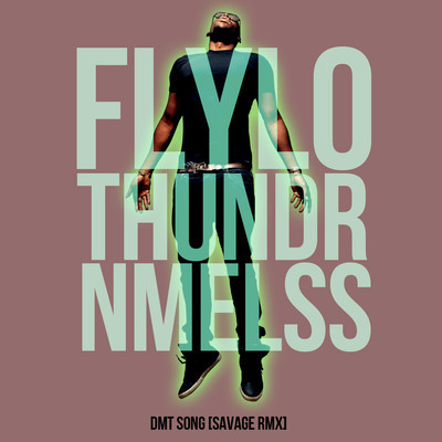 Flying Lotus x Thundercat x NAMELESS – DMT Song [SavageRMX]