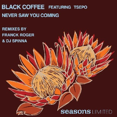 Black Coffee – Never Saw You Coming feat. Tsepo (DJ Spinna Galactic Soul Vocal Mix)