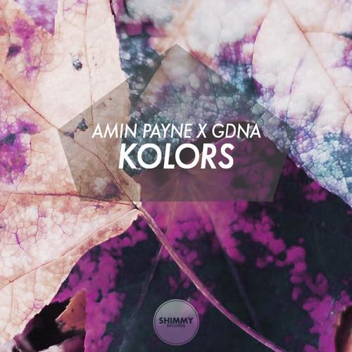 Amin Payne x GDNA – Kolors