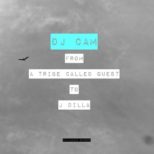 DJ Cam – Q Tip