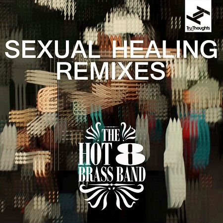 The Hot 8 Brass Band – Sexual Healing (Werkha Remix)